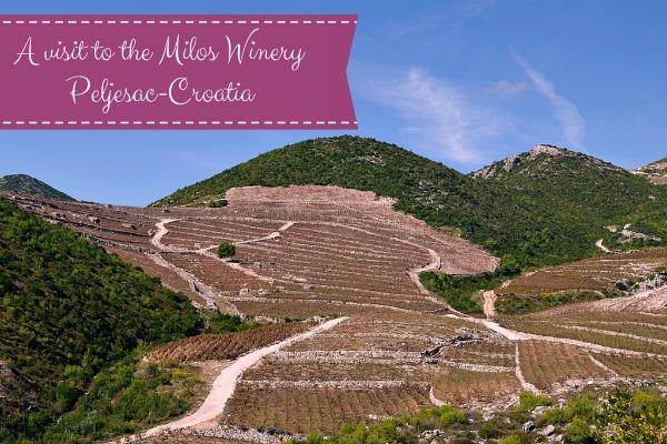 Croatia Wines: A Winery on Pelješac peninsula